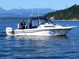 24' Grady White - Transport Canada Certified & Fully Insured